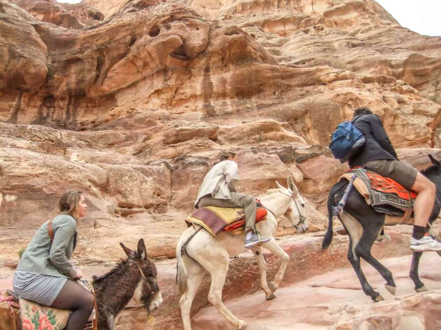 Donkeys scaling Petra to Monastery on journey to Jordan