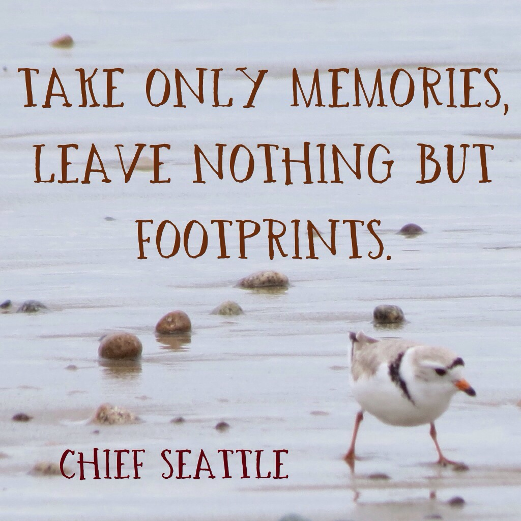 """Take only memories, leave nothing but footprints."" - Chief Seattle"