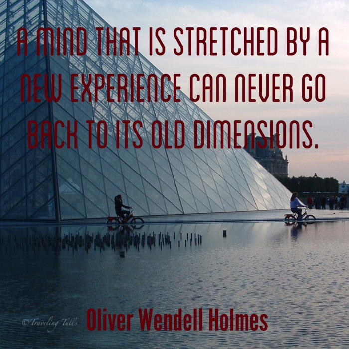 A mind that is stretched by new experiences can never go back to its old dimensions. - O. W. Holmes