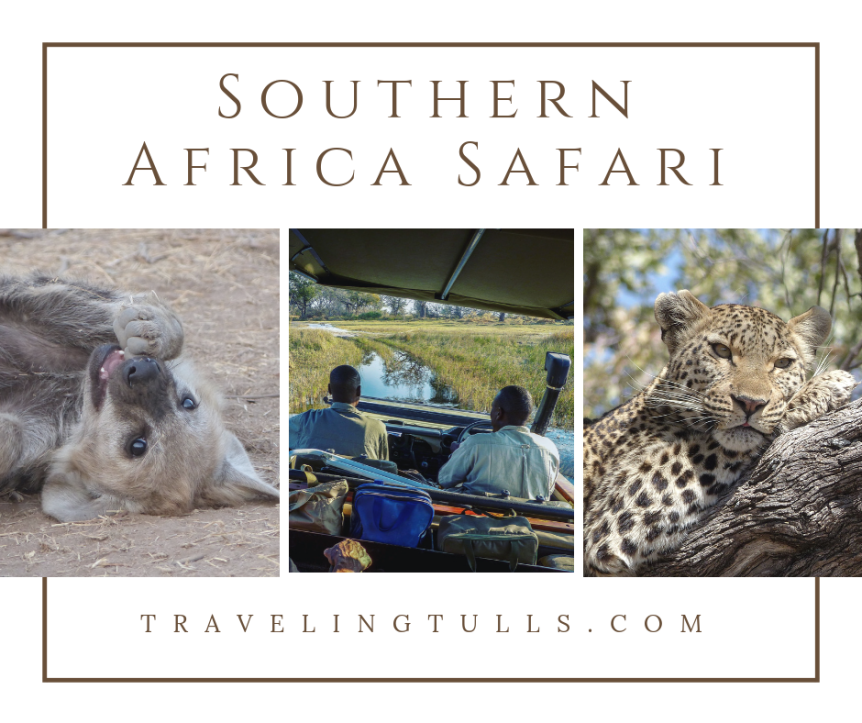 What to Expect on an African Safari: a first timer's experience