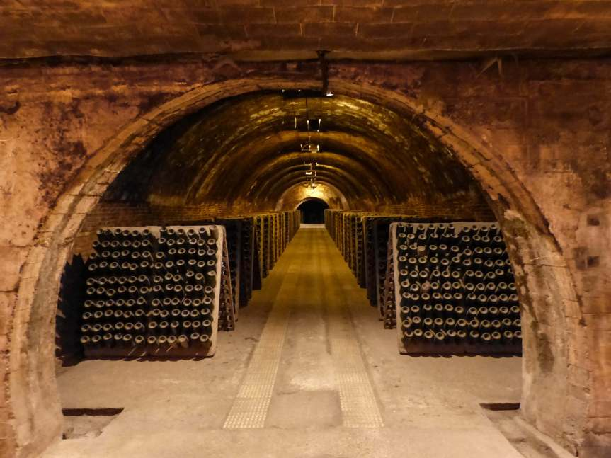 Day trip from Barcelona to Codorniu cava cellars