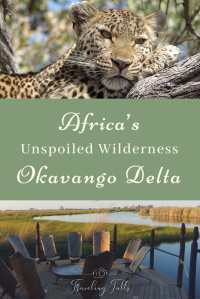 The Okavango Delta, the 1000th UNESCO world heritage site, is a must-see for African wildlife. How to get there, what to see, and what you'll love it!