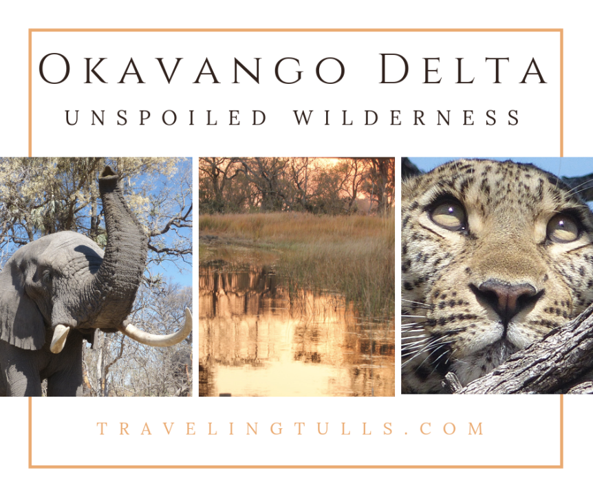 Safari in the Okavango Delta – Africa's Unspoiled Wilderness