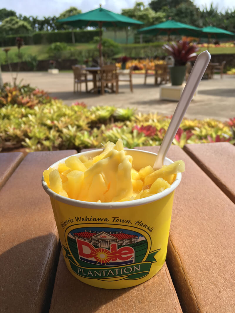 Dole pineapple, a fun stop on the way to the North Shore of Oahu