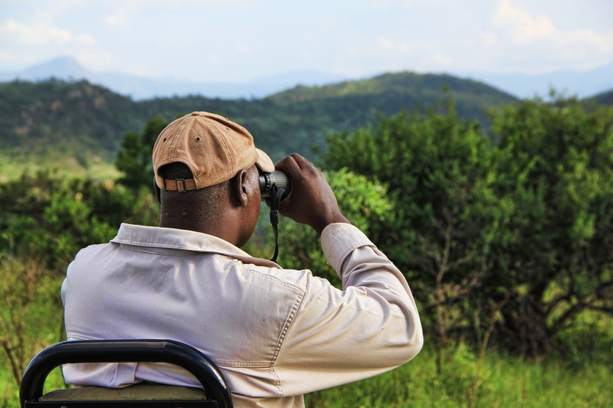 Do you need binoculars on safari?