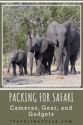 Gear and gadgets for an African safari