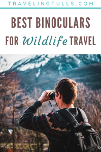 Best binoculars for park visits and wildlife travel