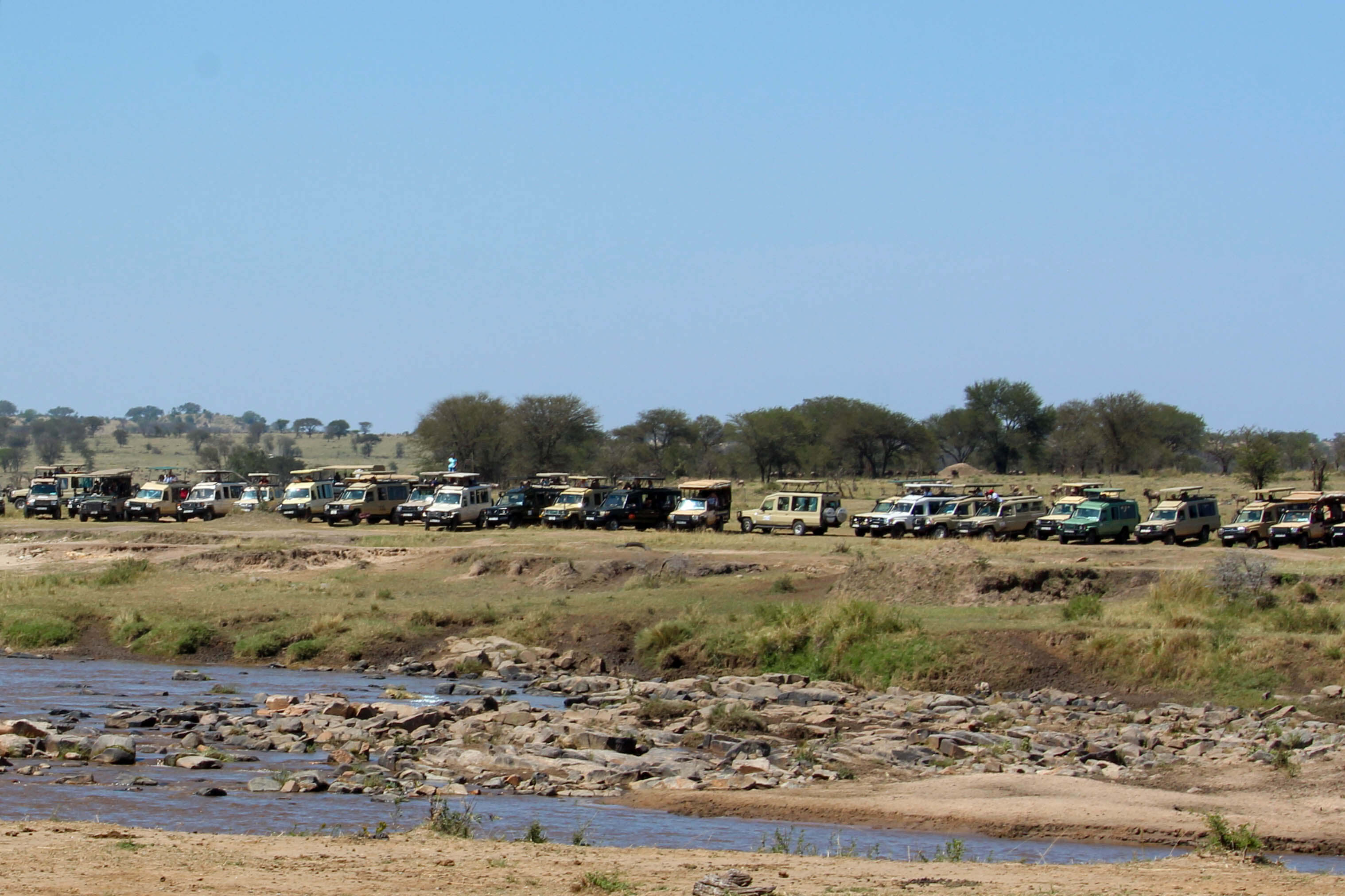 Choosing the best time to go on a luxury safari in Africa - consider the crowds during the Great Migration