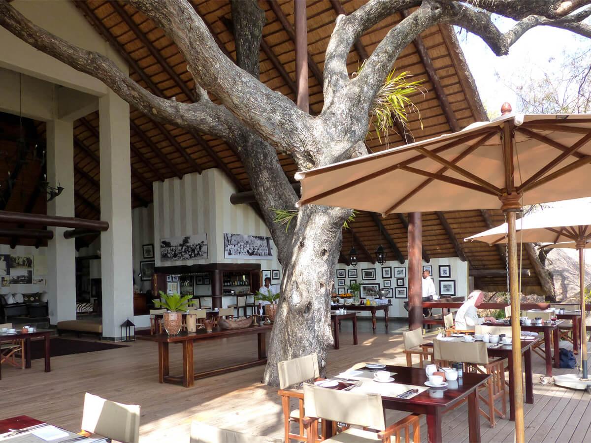 Londolozi private reserve - luxury safari lodge in South Africa