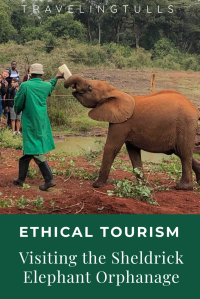 Ethical Wildlife Tourism - the David Sheldrick elephant orphanage in Nairobi