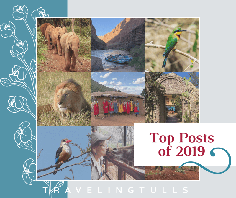 2019 Roundup: your favorite posts