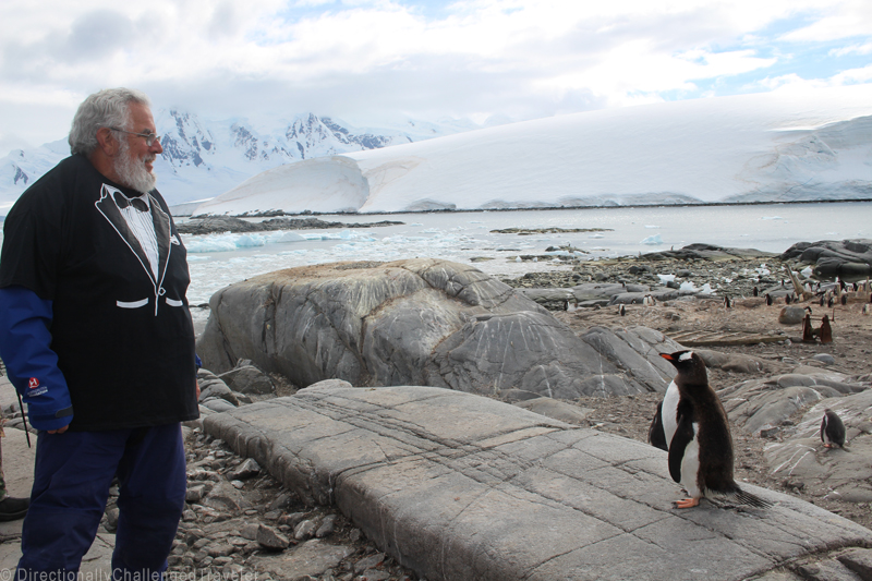 10 ultimate adventures for retirement - Antarctica by the Directionally Challenged Traveler