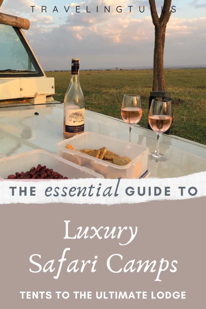 Guide to the best luxury safari camps. What to expect at each type of camp and favorite spots. #safariinafrica #luxurydestinations