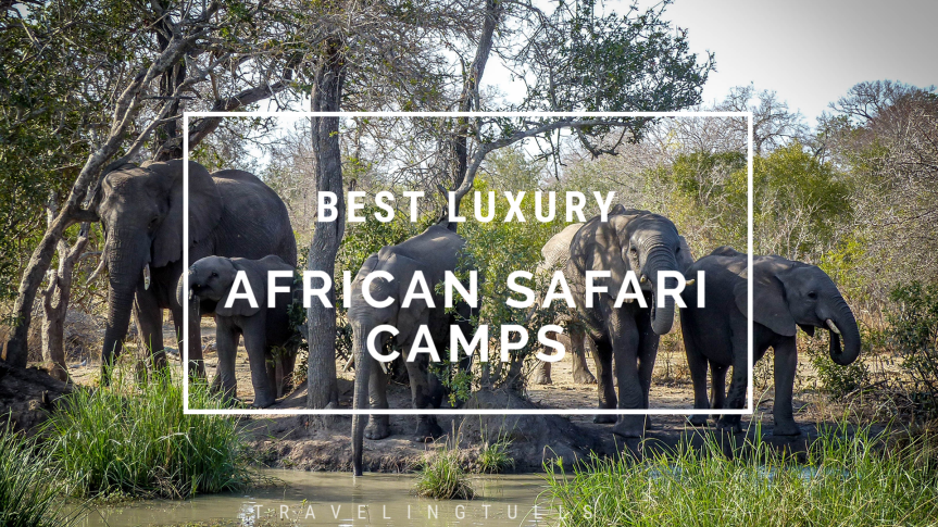 Guide to the Best Luxury African Safari Camps